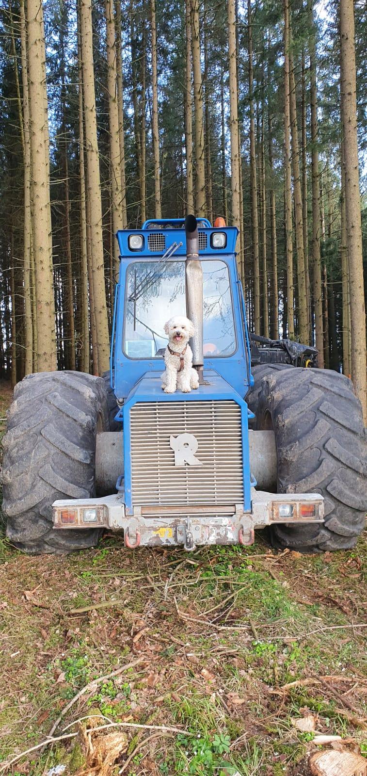Männer und Traktoren