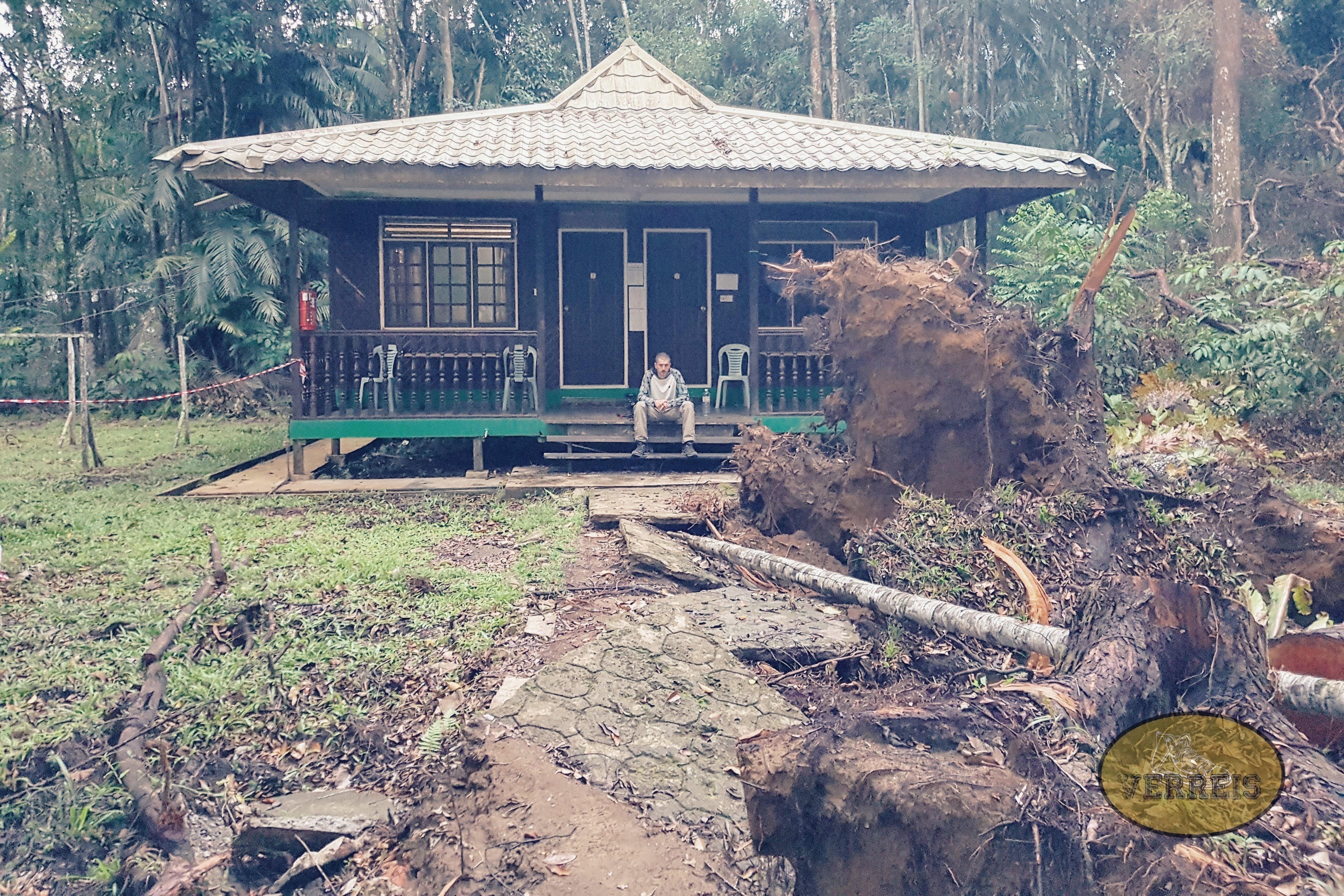Unsere Unterkunft im Bako Nationalpark・Borneo