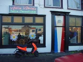 Coffeeshop Cannabiscafe Willie Wortel Indica Haarlem