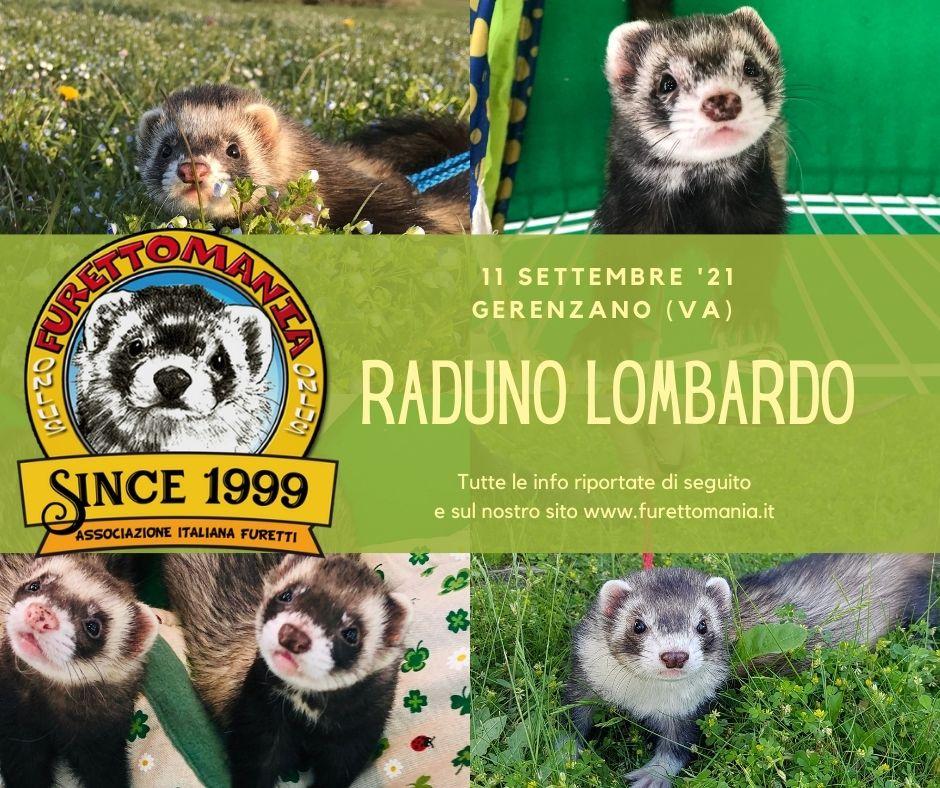 Evento Lombardo - 11 Settembre '21