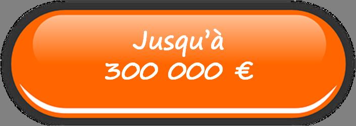 Vente jusqu'à 300 000 €
