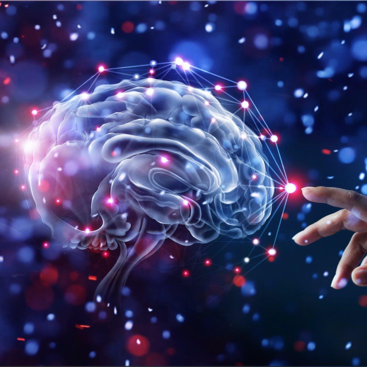 健康づくりの為の運動では筋力に脳と感覚の要素を加えると良いかもしれません