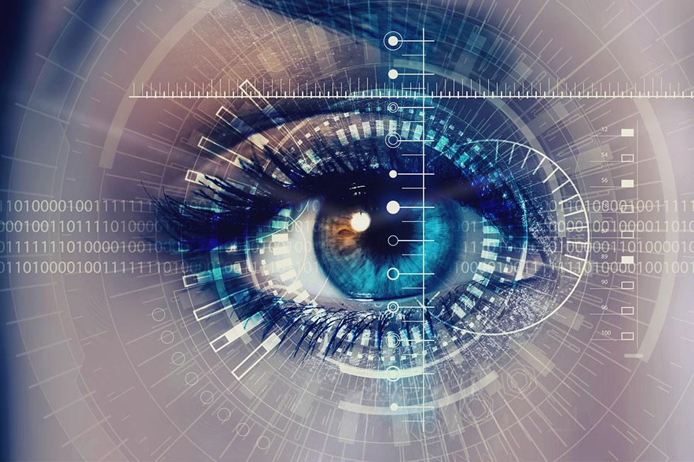 視覚と全身の関連