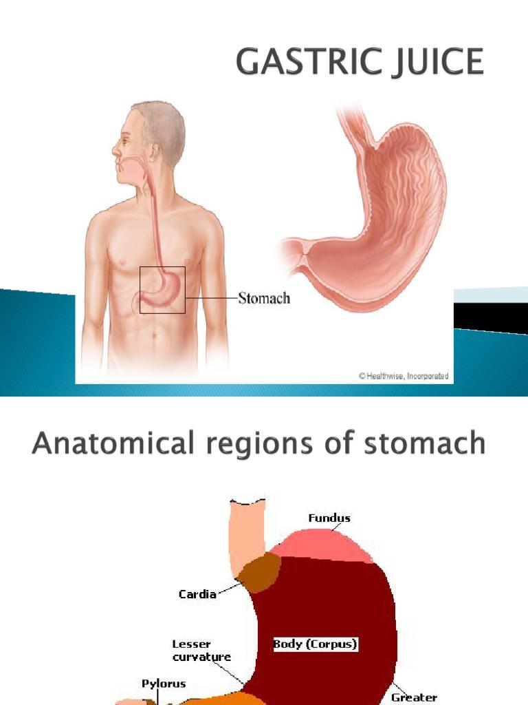 食欲と胃液