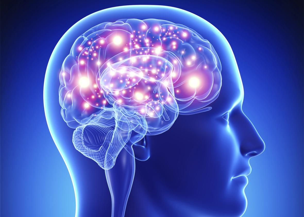 だらけた生活は脳の機能低下に繋がる