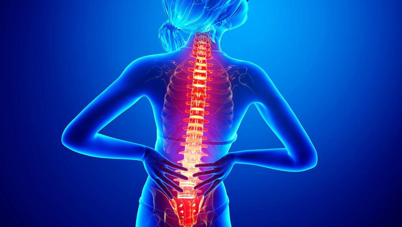 腰痛予防・改善の考え方