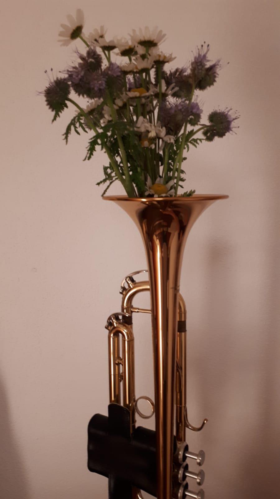 """Bei so manchem Musiker wachsen schon die Blumen aus dem Instrument. Vielen Dank für die """"Trompetenblume"""" unseres Künstlers Stephan Ketterl."""