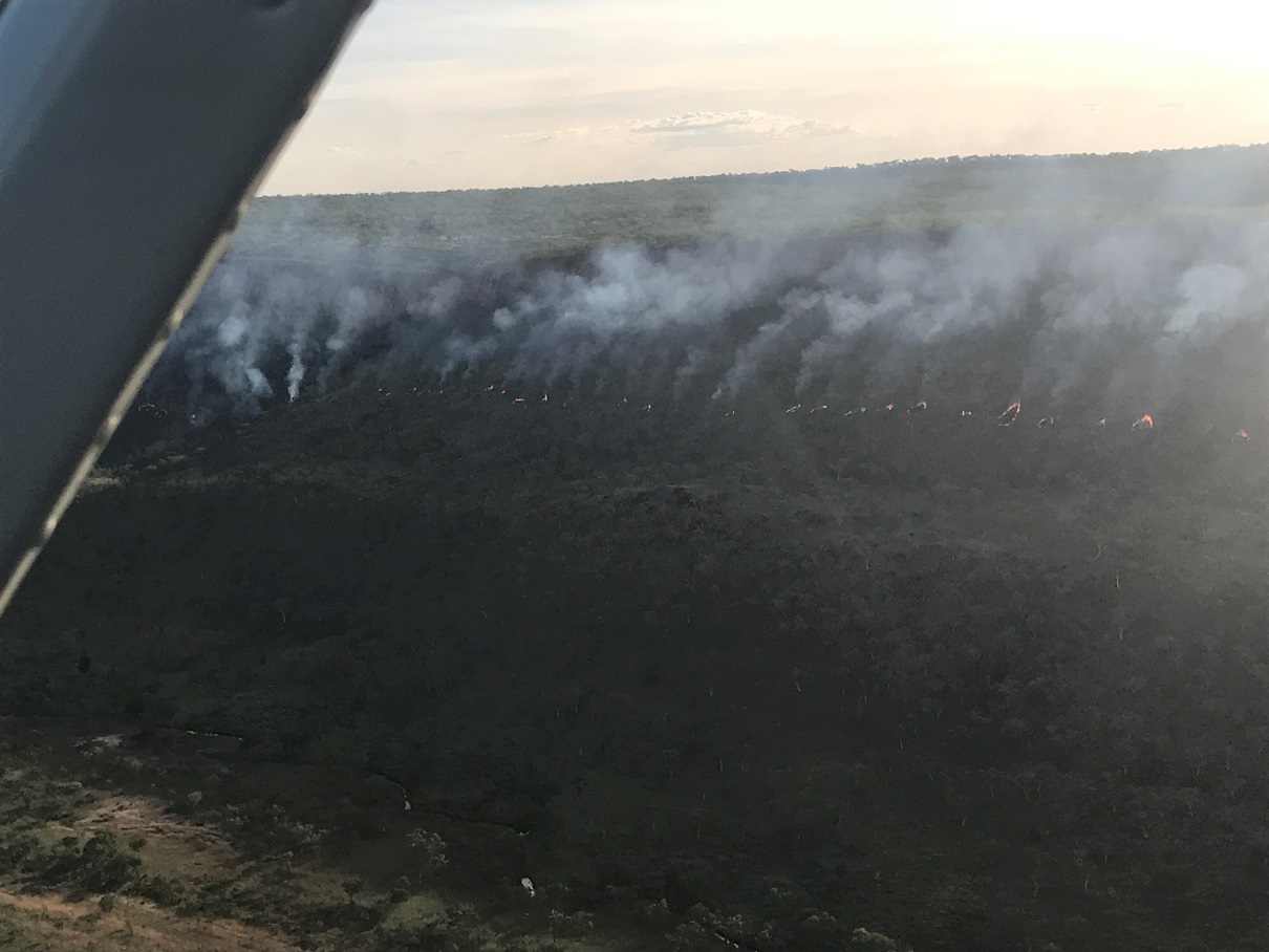 Without sufficient herbivores to keep vegetation healthy, we grudgingly resort to the use of fire to mitigate the effects of late dry-season wildfire