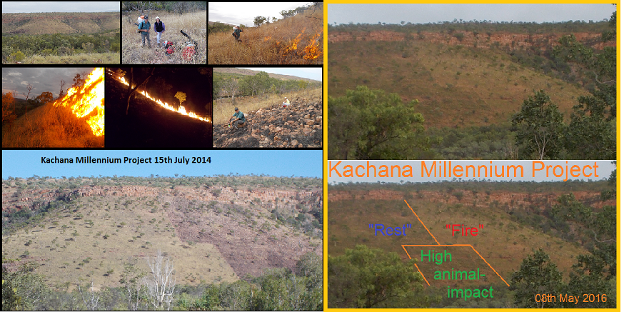 984 years to run, and you can spot our Kachana Millennium Project via Google Earth