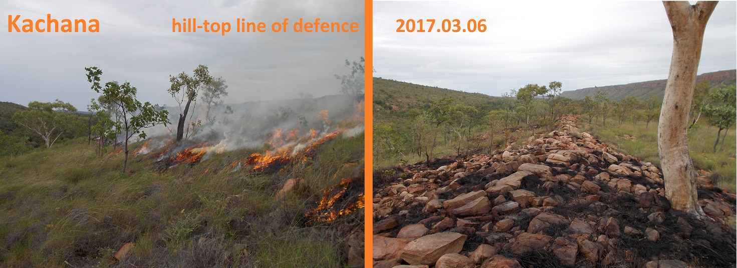 Line of defence in case of wild-fire