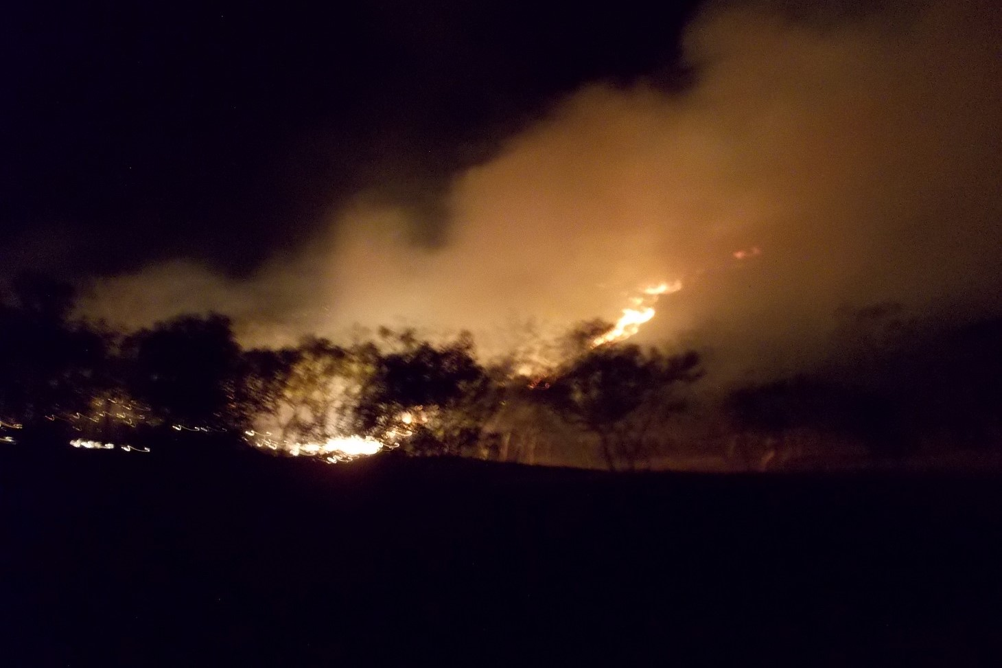 Fire fronts are easier to identify at night