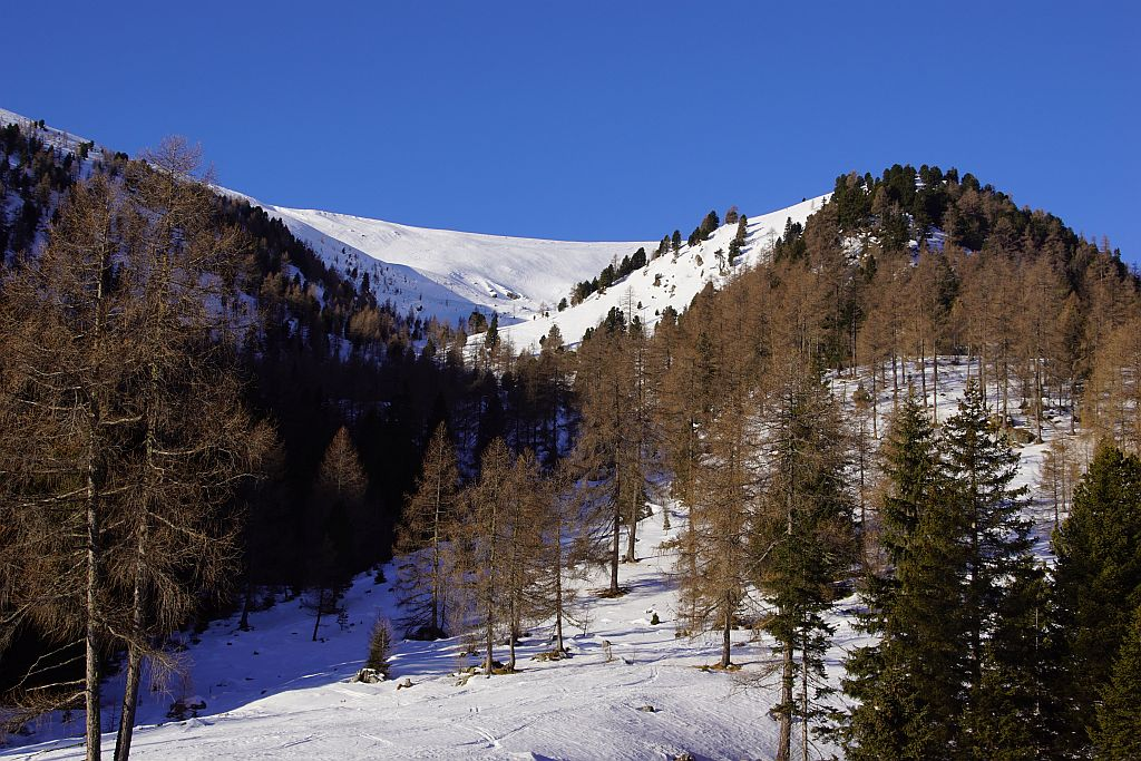 Blick ins Bärental, der Gipfel versteckt sch noch rechts