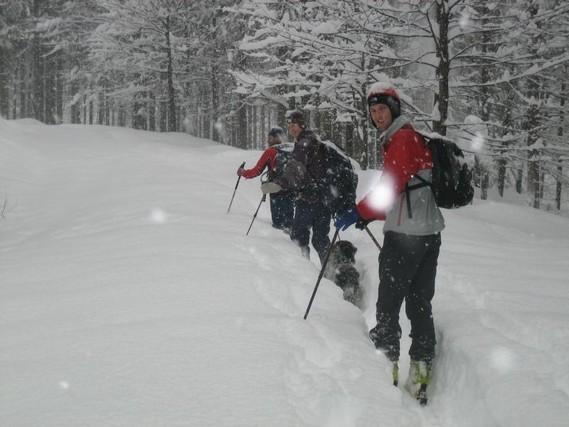 Aufstieg am Forstweg, hier sind es erst 50-70cm Pulver
