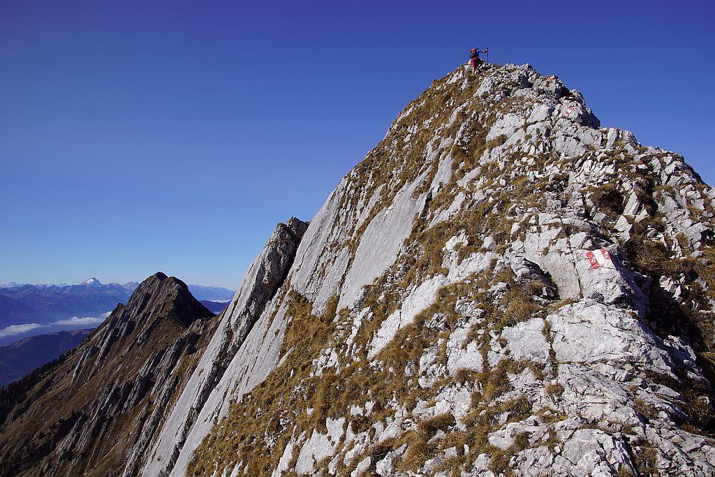 Knapp unter dem Gipfel wird es nochmals richtig ausgesetzt und steil, im Hintergrund links der Spitzegel