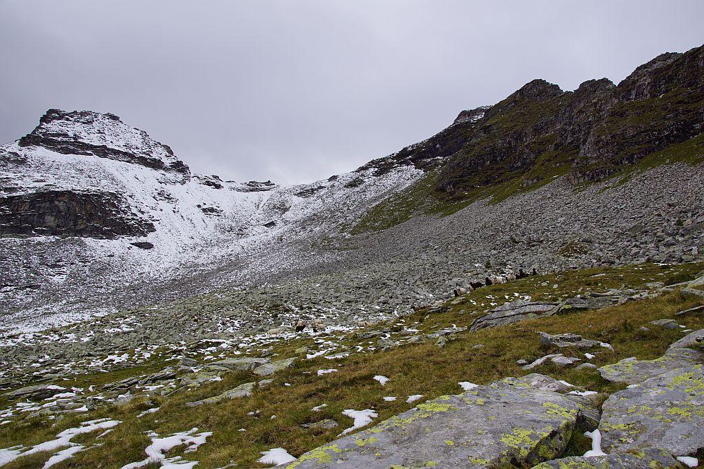 Vor dem großen Geröllfeld, der Steig zieht dann rechts ins Grüne hinein, ehe er Richtung Einsattelung quert