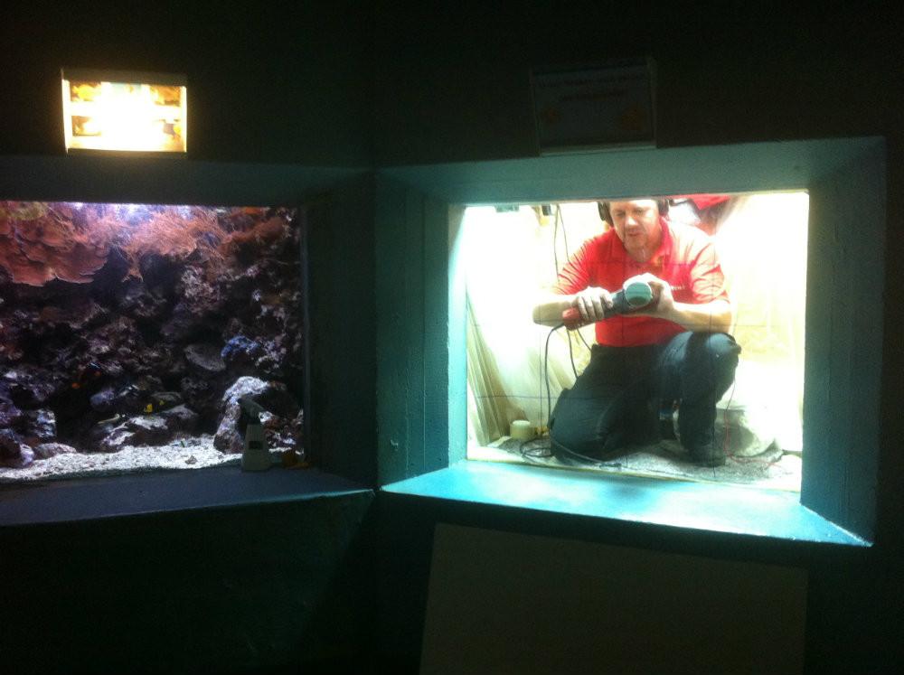 Aquarium polieren