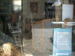 Schutz vor Vandalismus - Kratzschutzfolie für Glas