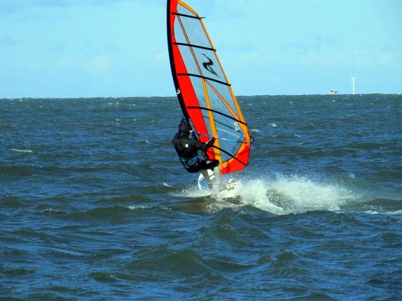 Windsurfen Dresden