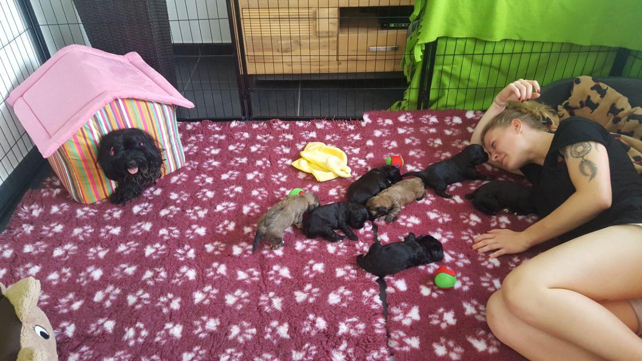Svenja hilft den Babys beim Eingewöhnen