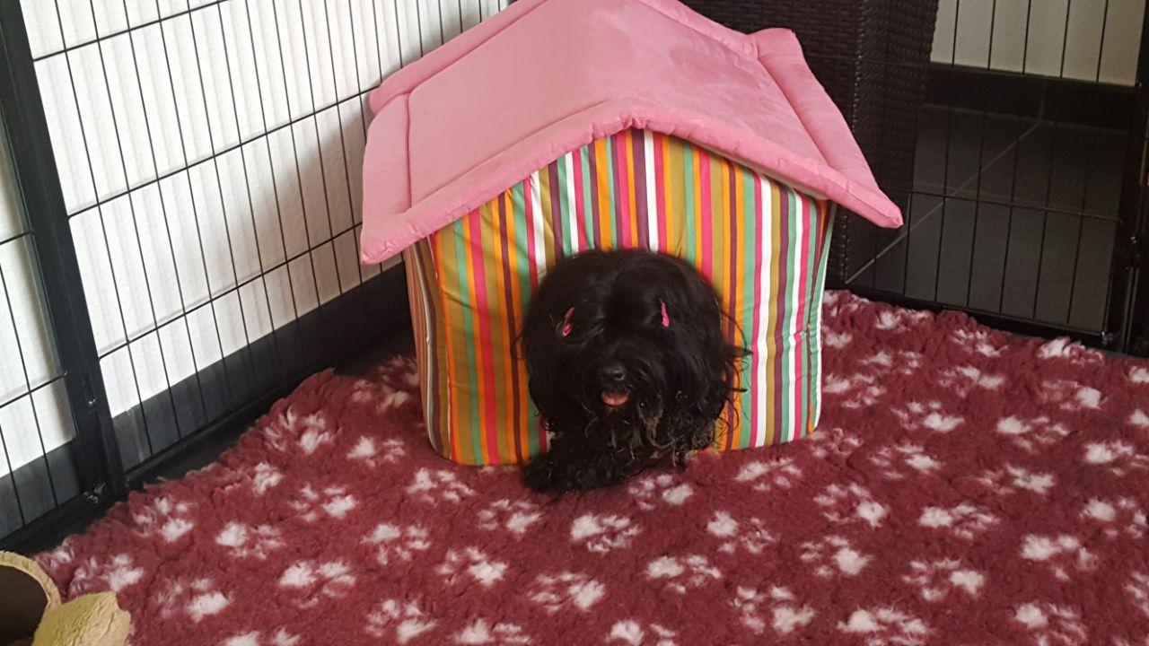 Mama Nele testet als erstes alle Betten