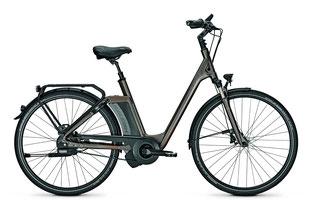 Raleigh Newgate Premium Harmony - City e-Bike - 2018