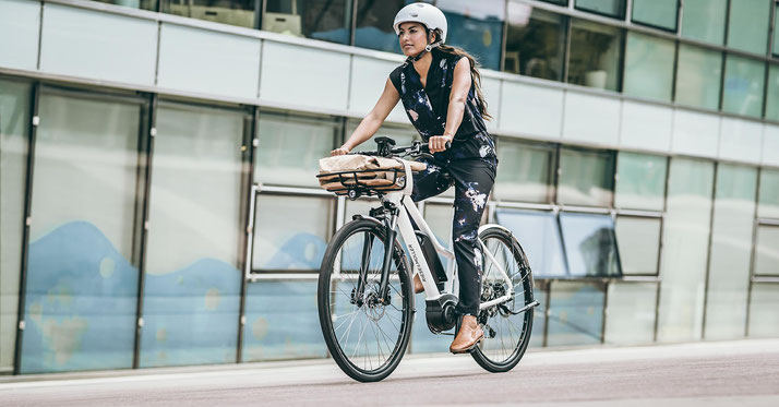 Riese & Müller - Roadster Mixte - 2020