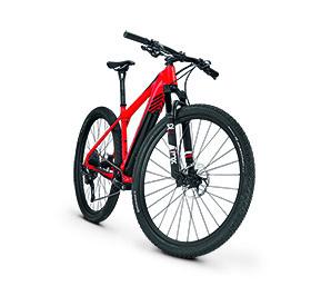 Focus - Raven² - e-Bike Testbericht