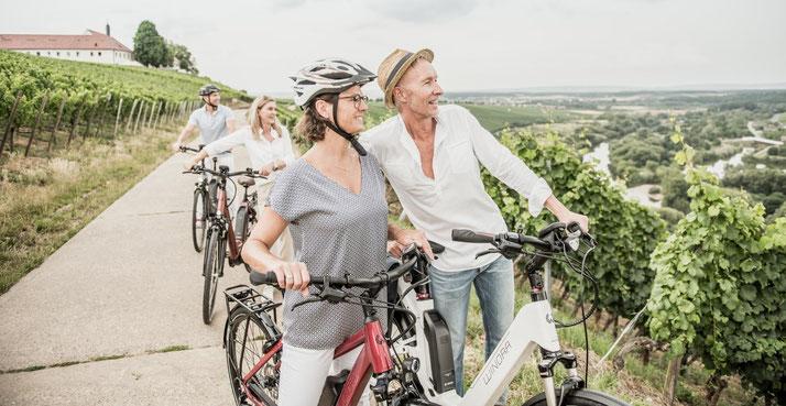 Winora Sinus Dyo e-Bikes - 2018