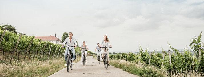 Winora e-Bikes in der e-motion e-Bike Welt in Bad Hall