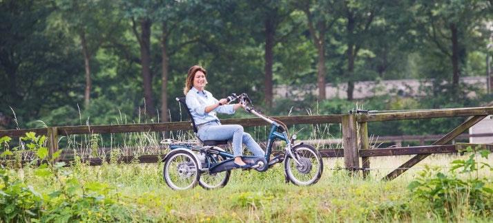 Dreirad für Erwachsene - 2019