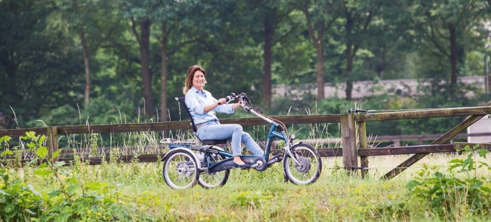 Dreirad für Erwachsene - 2020