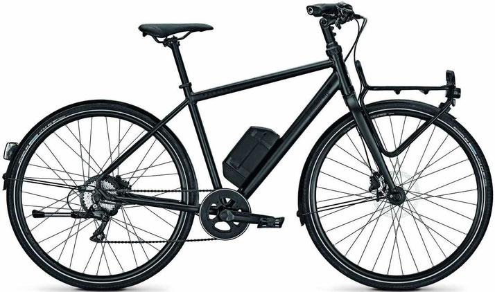 Raleigh Austin Lasten e-Bike - 2018