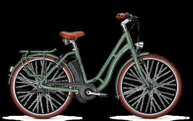 Raleigh Dover Impulse Classic in grün - City e-Bike - 2018