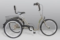 Dreirad mit Tiefeneinstieg - Pfautec Comfort - Dreirad für Erwachsene - 2018