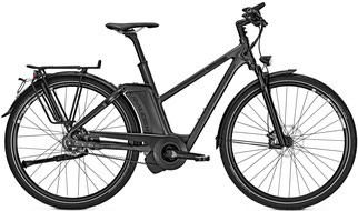 Raleigh - Ashford S11 in schwarz - Speed Padelec - 2018