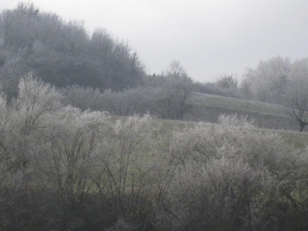 Vallée de la Gélise - Mézin le 2 janvier 2015 après un brouillard givrant