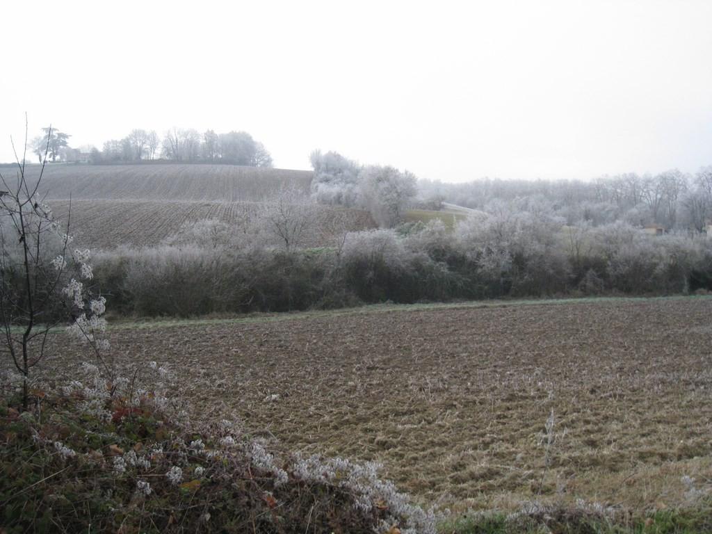 Vallée de la Gélise - Mézin le 2 janvier 2015