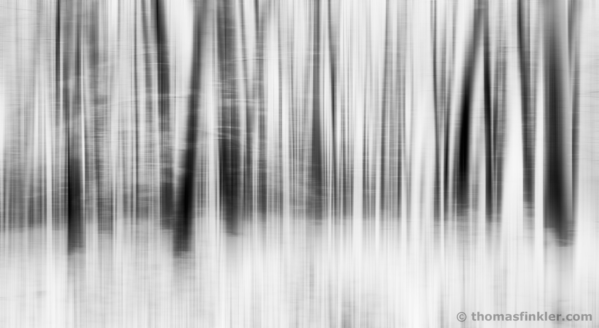 Thomas Finkler Photography, fine art nature photography, late summer, blurry trees, light show, colorful, poetic, abstract