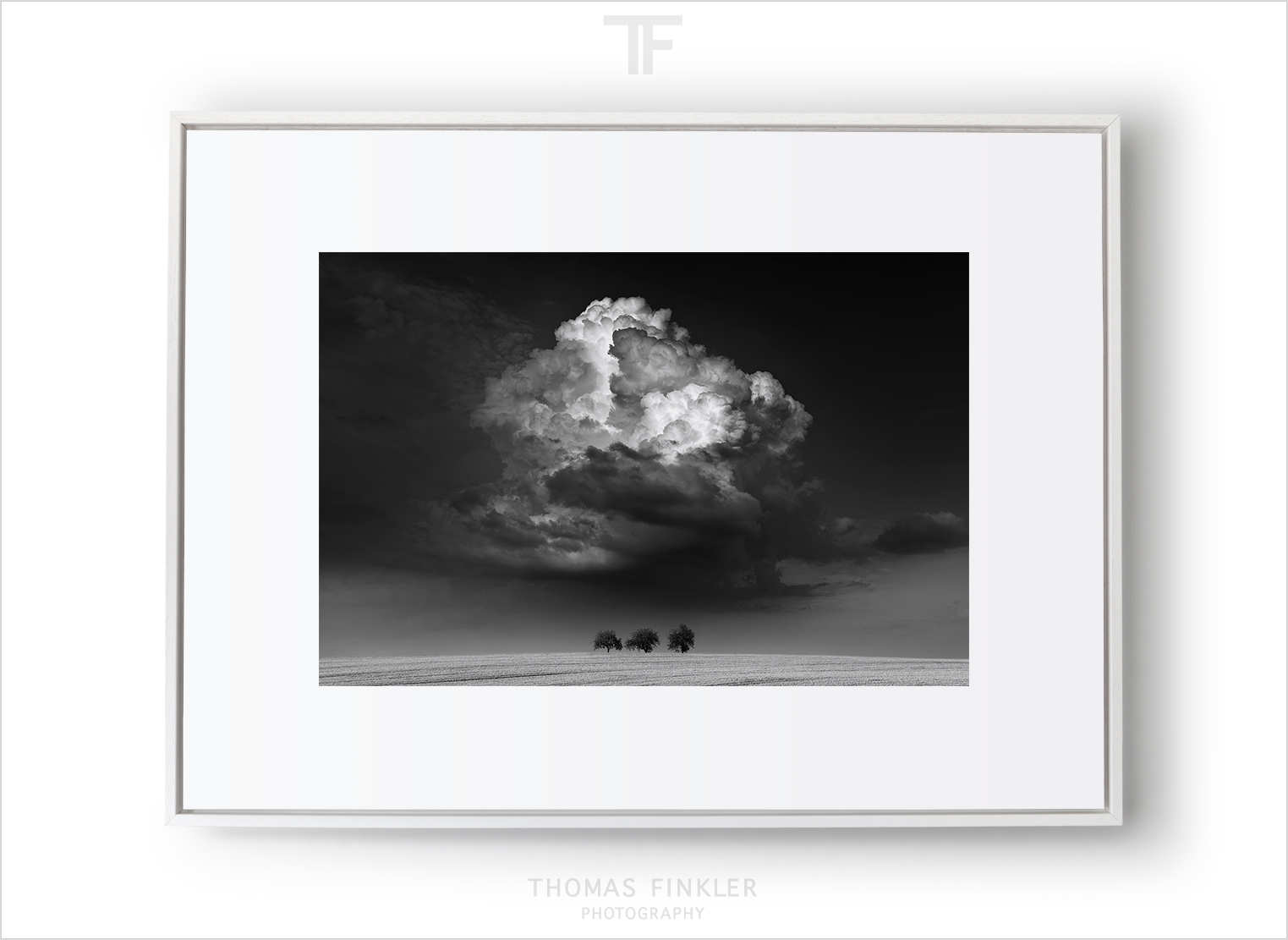 Fine art photography black and white landscape cloudscape minimal dramatic sky trees limited edition framed prints for sale jpg