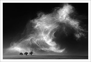 Thomas Finkler Photography, fine art nature and landscape photography