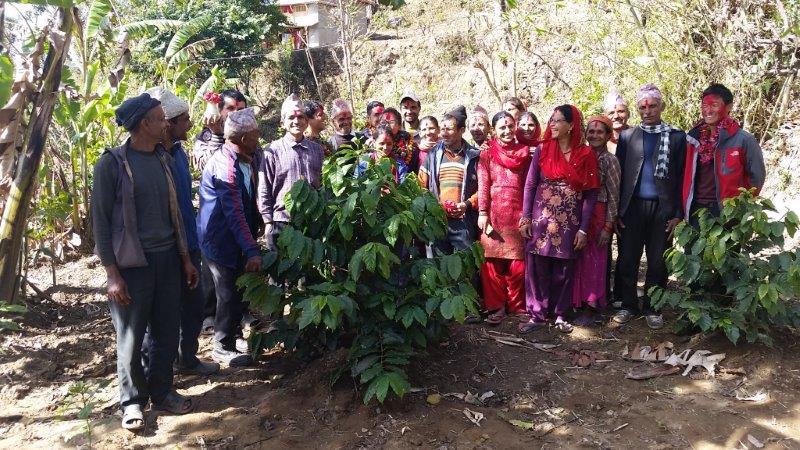 Gründung der Kaffeekooperative