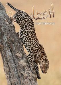 Jagdzeit International 26, Leopard