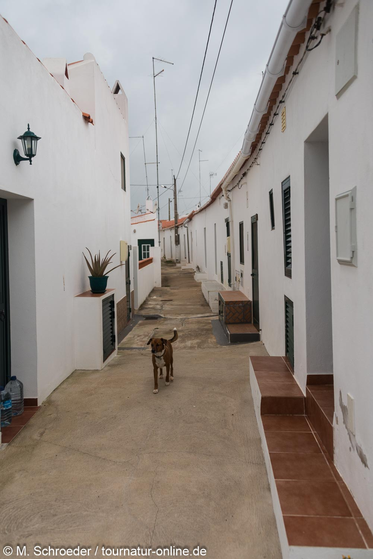Bergbauort Mina de São Domingos