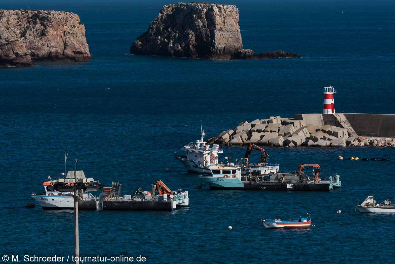 Sagres und das Cabo de São Vicente