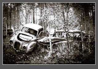 Autofriedhof im Kyrkö Mosse