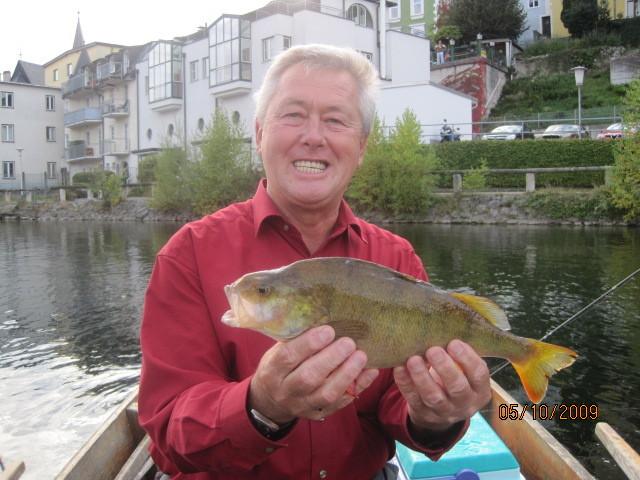 Norbert Haas mit Barsch von 39 cm - gefangen im Oktober 2009 auf Streamer im Scherrerwasser/ Traunsee-Auslauf