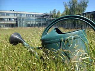 Bien vivre autisme activité inclusif jardin arrosoir