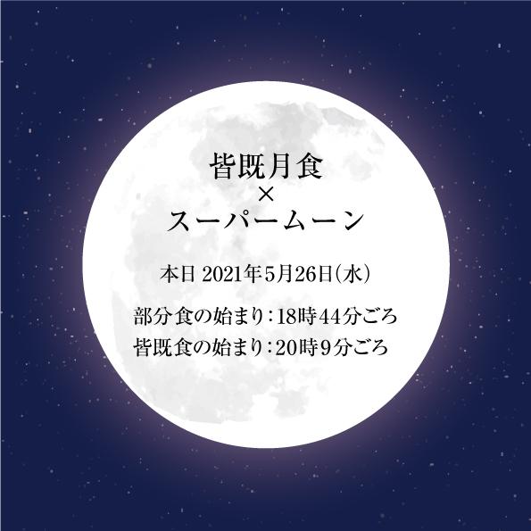 夏のお月見!今日スーパムーン×皆既月食を見よう!!