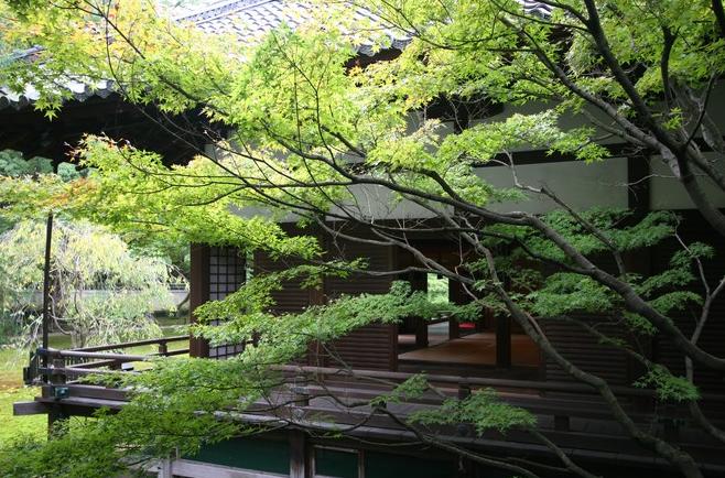 SHÔREN-IN  ou PALAIS AWATA. fin XIIIe s. reconstruite en 1895 après incendie.TEMPLE MORTUAIRE pour la Maison Impériale. District HIGASHIYAMA.  Préfecture TOKYO. C* François-Xavier DELMAS