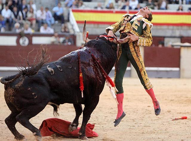 MADRID. LAS VENTAS. UN AUTRE ACCIDENT DE JOSE TOMAS .